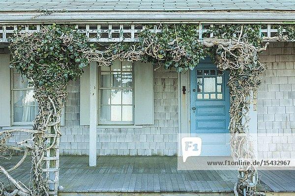 USA  New England  Massachusetts  Nantucket Island  Siasconset  ivy covered cottage.