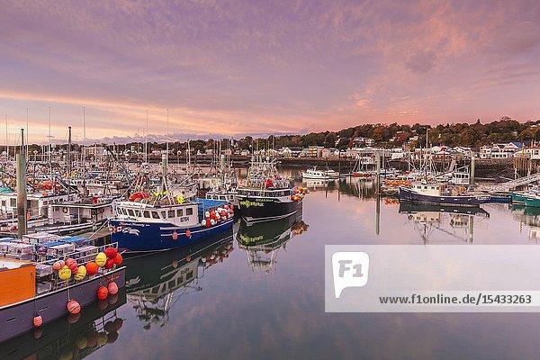 Canada  Nova Scotia  Digby  port area  world's largest scallop boat fleet  dawn.