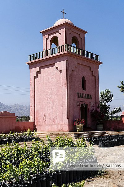 Tacama wine cellar  the oldest winery in America  Ica  Peru.