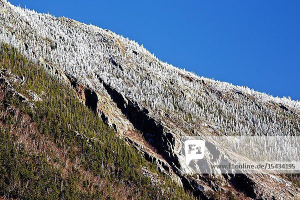 The cliffs of Mount Webster from the Mt Willard Section House site along the old Maine Central Railroad in Crawford Notch State Park of the White Mountains  New Hampshire USA First known as the Portland & Ogdensburg Railroad chartered in 1867 then leased to the Maine Central Railroad Since 1995 the Conway Scenic Railroad  which provides passenger excursion trains through the notch has been using the tracks