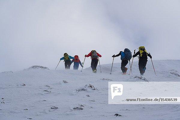 Ski touring in the Lyngen Alps  Lyngen peninsula  Troms County  Norway  Europe