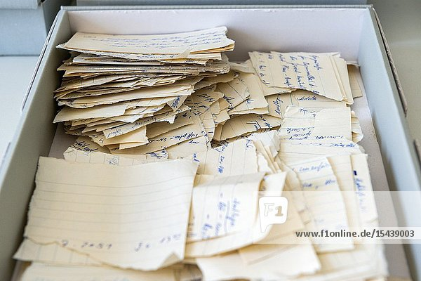 Berlin  Germany. Some 30 years after the Berlin Wall was torn down  BStU officials are still reconstructing damaged and torn documents from the MfS / Stasi Archives  to make them accessible to people of interest and for research..