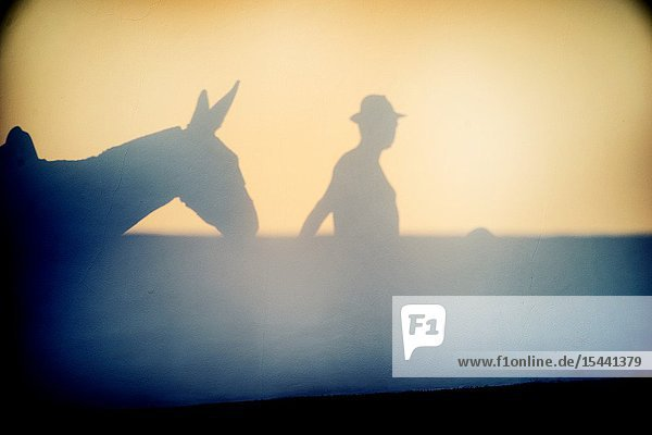 Silhouette of a man in a straw hat with a donkey reflected on a wall. Mahon  Balearic Islands  Spain  Europe.