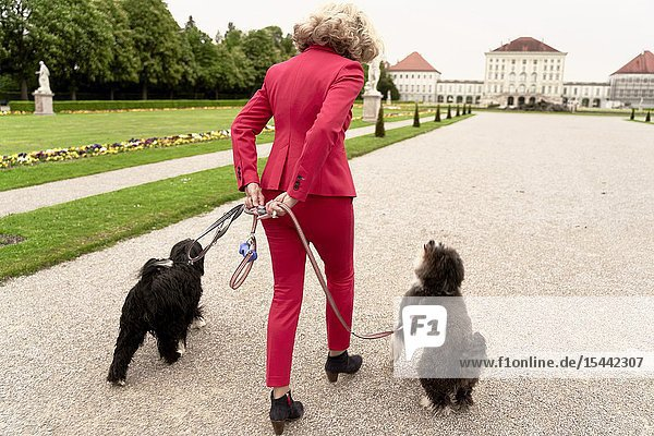 Senior woman (67 years old) walking with two dogs in park  in Nymphenburg  Munich  Germany.