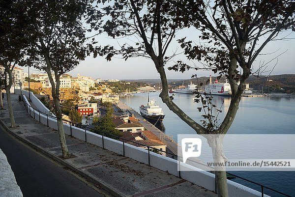 View of the port and city with trees in the foreground and a boat. Mahon Menorca  Balearic Islands  Spain  Europe.