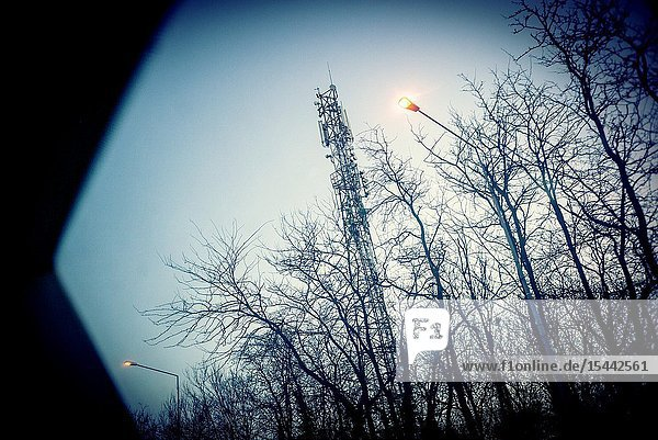 Telecommunications tower around trees and lampposts view from a window at dawn. Bucharest  Romania  Europe.