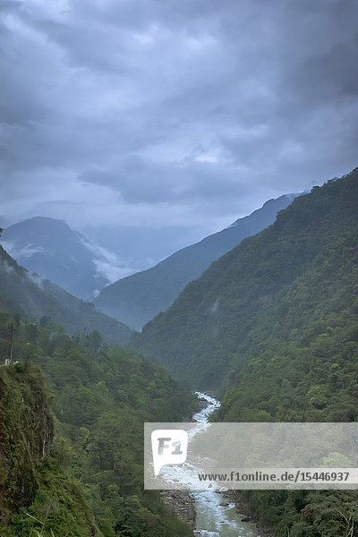 River flowing through mountains  Sikkim  India.