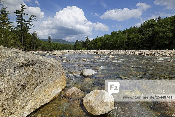 East Branch of the Pemigewasset River in Lincoln  New Hampshire on a cloudy spring day. This river begins deep in the Pemigewasset Wilderness in the area known as Stillwater Junction.