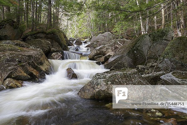 Cascade along Jackman Brook in North Woodstock  New Hampshire during the spring months.