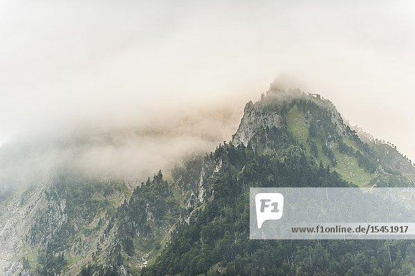 Peguere Peak in Cauterets (Hautes-Pyrénées Department  Nouvelle-Aquitaine Region  France)