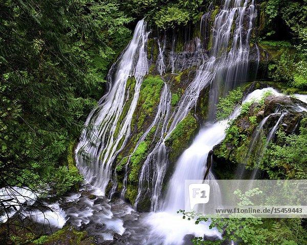 Panther Creek Falls  Washington.