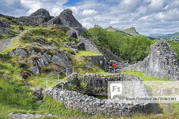 Castell y Bere  Dysynni Valley  Gwynedd  Wales.