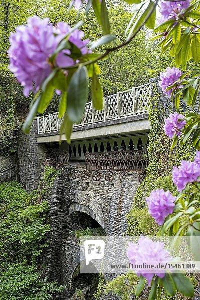 Devils Bridge  Pontarfynach  Wales.