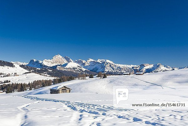 Mountain huts in the snowy plateau of Alpe di Siusi / Seiser Alm  Dolomites  South Tyrol  Italy.