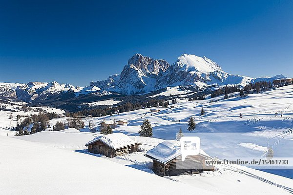 Sassopiatto and Sassolungo from snowy huts at Alpe di Siusi / Seiser Alm  Dolomites  South Tyrol  Italy.