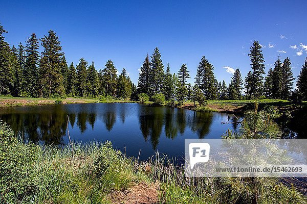 McGraw's Pond is a high mountain small lake very close to the Hell's Canyon Overlook that is thousands of feet above the Snake River.