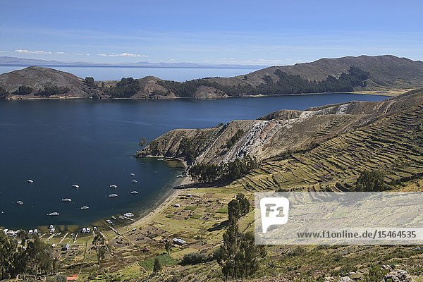 Boats in the bay and agricultural terracing on Isla del Sol  Lake Titicaca  Bolivia.