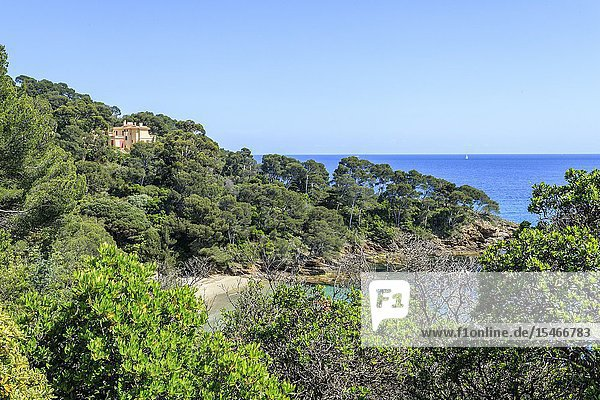France  Var  Rayol Canadel sur Mer  the Domaine du Rayol  Mediterranean garden  property of the Conservatoire du littoral  Villa Rayolet and the Pointe du Figuier (obligatory mention of the garden name and editorial only  no postcards and calendars).
