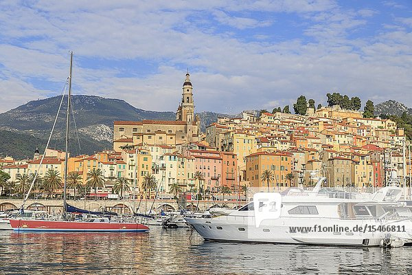 France  Alpes Maritimes  Menton  the Vieux Port with sailboats and speedsails and the old town dominated by the Saint Michel Archange basilica.
