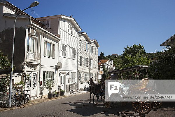 Horse-carriage in front of the old wooden houses in Burgazada island  Prince Islands  Istanbul  Marmara Region  Turkey  Europe