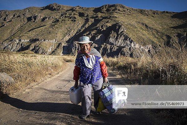 Peru  Coporaque  farmer working in the fields.