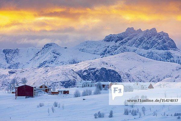 Frozen Saltisen  Lofoten  Nordland  Norway  Europe.