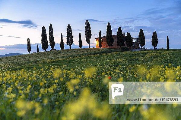 Europe  Italy  Tuscany  Pienza  Siena district.