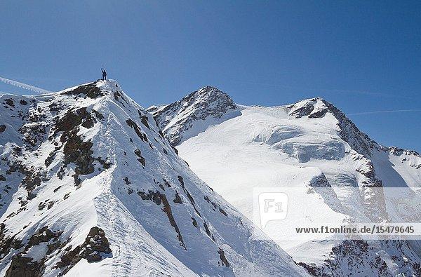 Skimountaneering on the top of San Giacomo peaks. Santa Caterina Valfurva  Sondrio district  Lombardy  Italy.