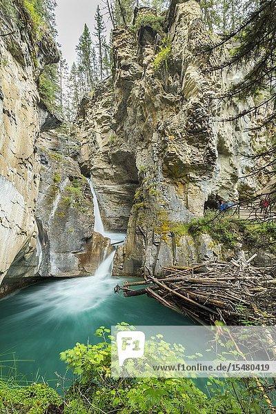Johnston Canyon  Banff National Park  Alberta  Canada.
