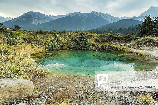 The colorful Inkpots in Johnston Canyon  Banff National Park  Alberta  Canada.