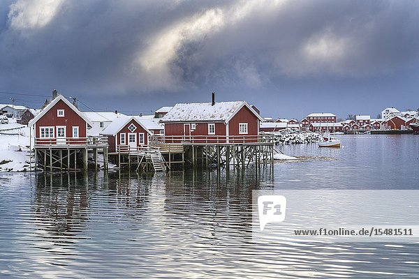 Traditional 'rorbu' houses in winter. Reine  Lofoten district  Nordland county  Northern Norway  Norway.