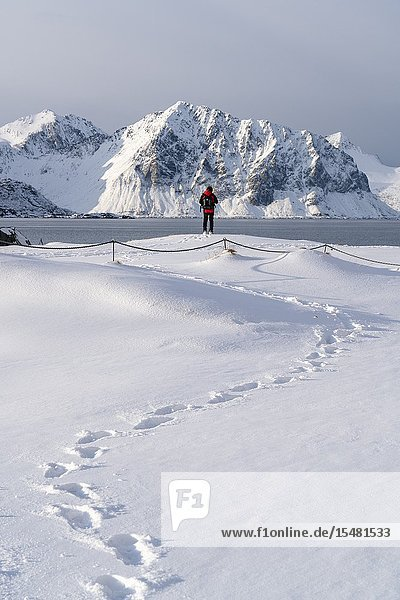 Man standing looking towards the mountains on Haukland Beach in winter. Leknes  Nordland county  Northern Norway  Norway.