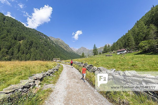 Mother and son walk on path towards Rifugio Valmalza  Valle delle Messi  Valcamonica  province of Brescia  Lombardy  Italy.