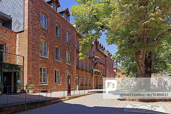 Kloster Hohenburg  Elsass  Frankreich  Europa