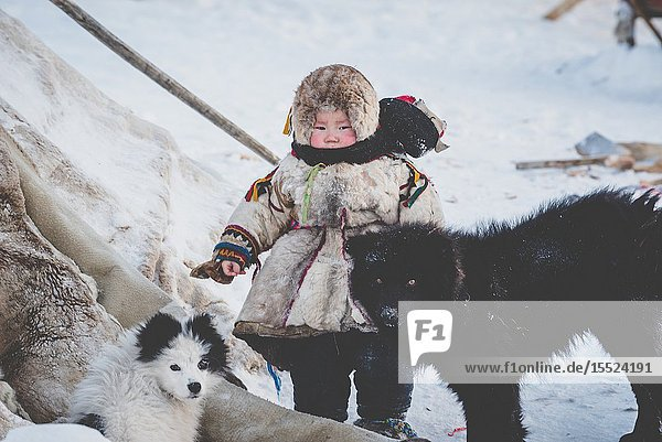 A small boy with dogs at the nomadic reindeer herders camp. Polar Urals  Yamalo-Nenets autonomous okrug  Siberia  Russia.