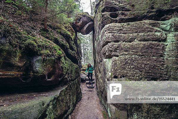 Rock maze in Ostas Nature Reserve in Table Mountains range in Czech Republic.