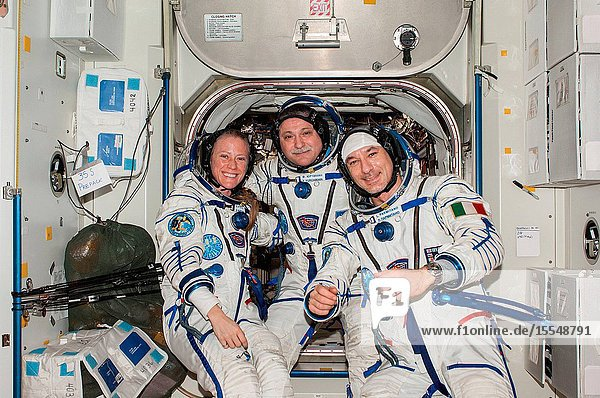 Attired in Russian Sokol launch and entry suits  Russian cosmonaut Fyodor Yurchikhin (center)  Expedition 37 commander  along with NASA astronaut Karen Nyberg and European Space Agency astronaut Luca Parmitano  both flight engineers  pose for a portrait in the Unity node of the International Space Station.