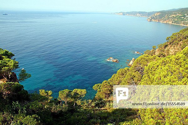 Landscape of the Costa Brava  Mediterranean Sea  Sant Feliu de Guíxols  Girona  Catalonia  Spain