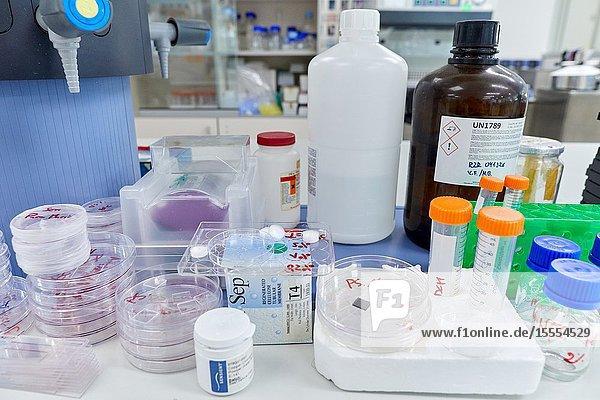 Chemical laboratory  Biomaterials Laboratory  Unit of Health Technology  Technology Centre  Tecnalia Research & Innovation  Donostia  San Sebastian  Gipuzkoa  Basque Country  Spain