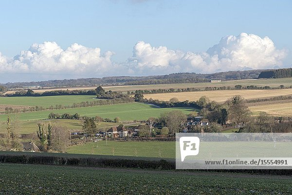 Candover Valley  Hampshire  England  UK. January 2019. A winter landscape across farmland looking towards the hamlet of Totford on a sunny day in Hampshire  UK.