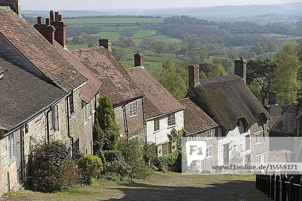 Shaftsbury,  Dorset,  England,  UK. April 2019. Homes on the steep slope of Gold Hill in Shaftsbury,  Dorset,  UK a rural tourist attraction.