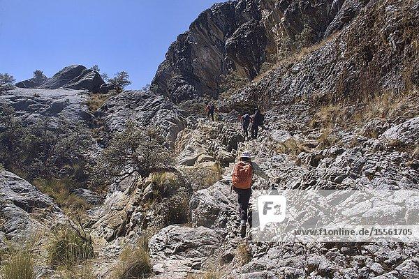 Hiking the beautiful Laguna Churup trail  Huascaran National Park  Huaraz  Peru.