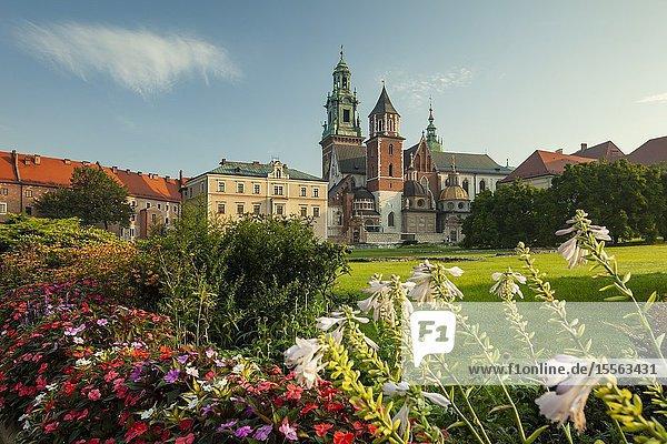 Summer morning at Wawel Royal Castle in Kraków  Poland.