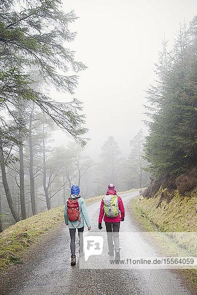 Women hiking in rainy woods