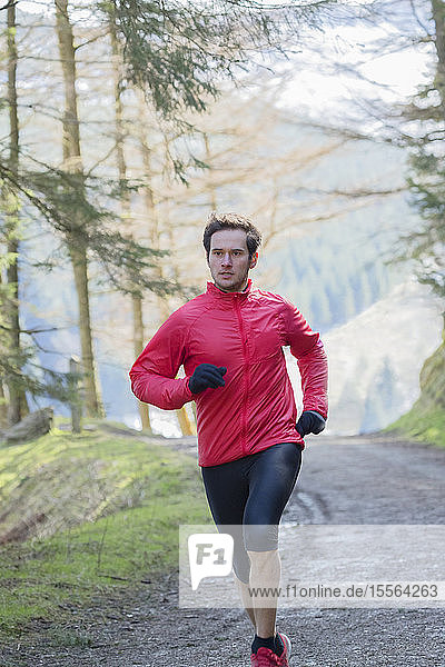 Man jogging in woods