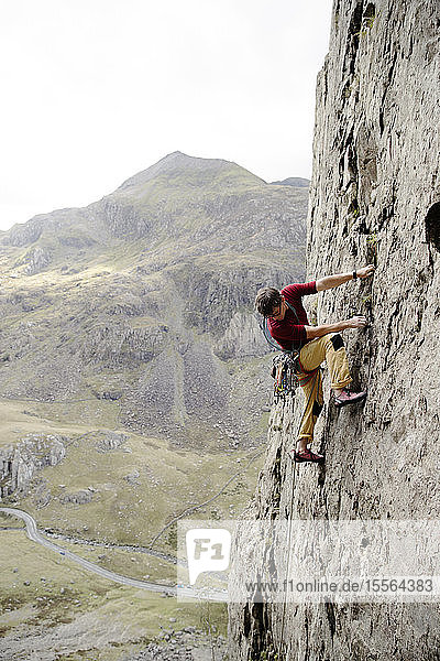 Male rock climber scaling rock face  looking down