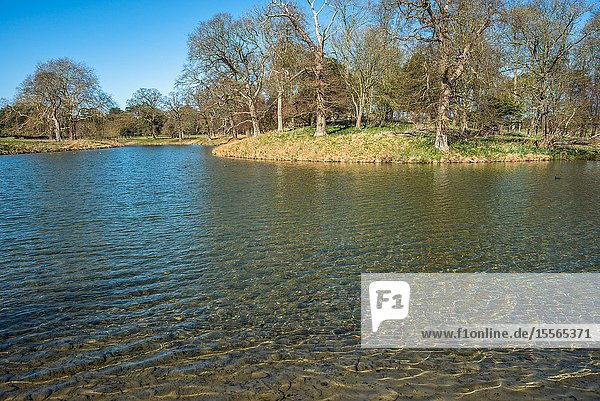 Holkham park lake  Holkham hall in North Norfolk  East Anglia  England  UK.
