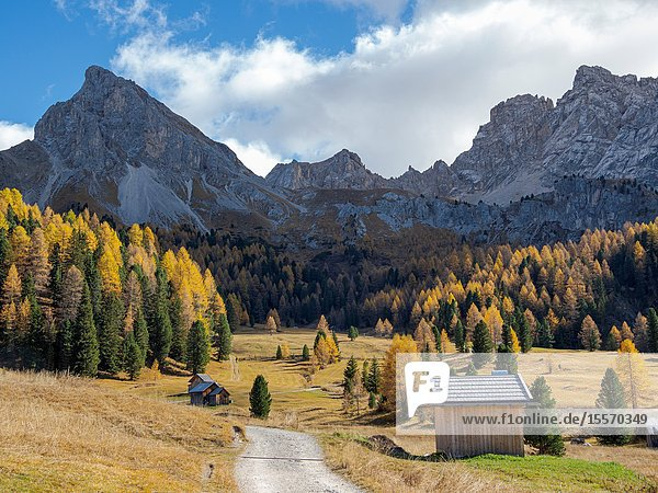 Val San Nicolo in Val di Fassa. Marmolada mountain range in the Dolomites of Trentino. Dolomites are part of the UNESCO world heritage. Europe  Central Europe  Italy.