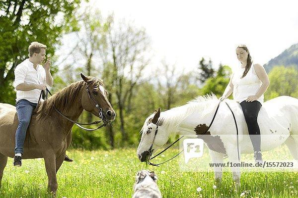 Couple riding horses  in Wackersberg  Bavaria  Germany