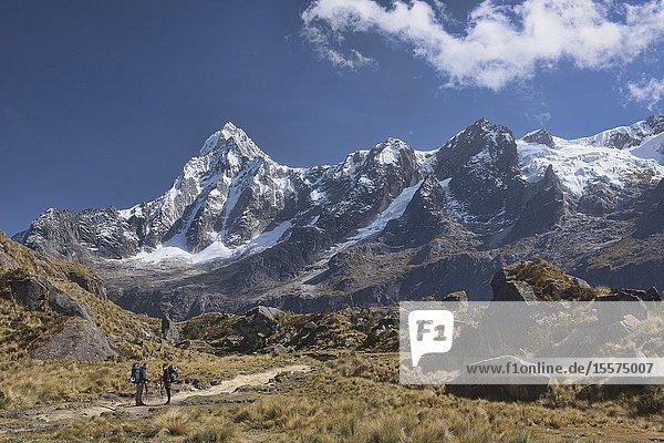 View of Taulliraju heading to Union Pass on the Santa Cruz trek  Cordillera Blanca  Ancash  Peru.